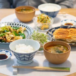 [低脂質ごはん]GABANの回鍋肉とライフの生餃子で低脂質なおうち中華