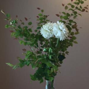 KaLauさんの花♫