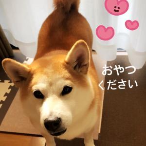 晴れました〜☀️おやつ日和(^.^)