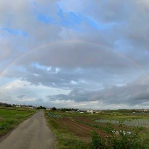 散歩なう。虹が・・