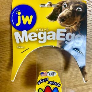 ☆今日のgenki☆ Mega Egg