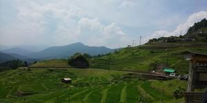 三重県熊野市 丸山千枚田の見どころツーリングへ レッラゴー