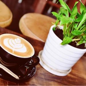ふわっふわなカプチーノがいただける隠れ家カフェ~The Old Compass Cafe ~