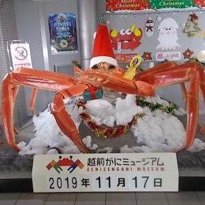 蟹祭り(越前海岸)