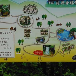 史跡 龍興寺へミニ登山