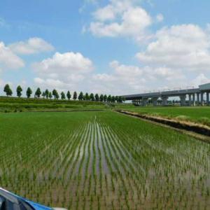 新幹線のレール敷設