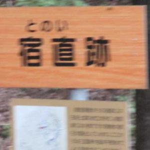 朝倉遺跡の山城跡