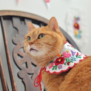 カロチャ刺繍の猫の襟その1
