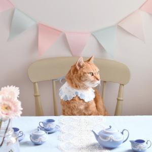 青い花刺繍の猫用襟