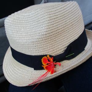 シギリヤ宿泊は自然の中のコテージホテル~スリランカ旅日記④~
