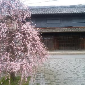 梅の香漂う江戸の町並みと幻の鉄道遺跡