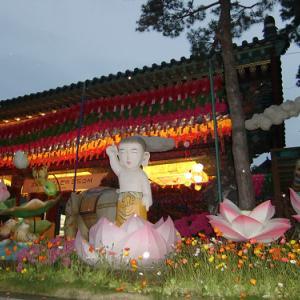 曹渓寺の燃灯祝祭、来年は行けるかな