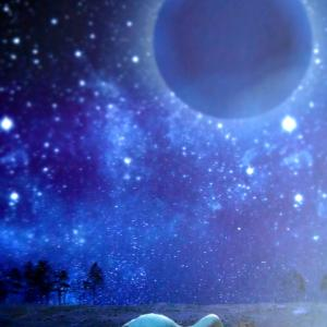てんびん座の新月●⁺゜『自分はどう思うか?感じるか?』