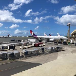 60代ハワイ旅行帰国便!コードシェアで大韓航空♪ご飯が美味しくて大満足!