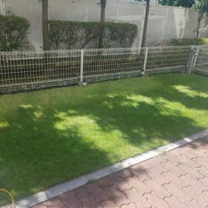芝の手入れ記録(9月最終週分)