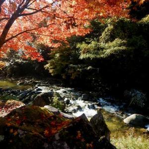 滝ノ口河川公園(下松市)