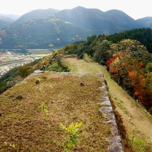 津和野城跡からSLを見る