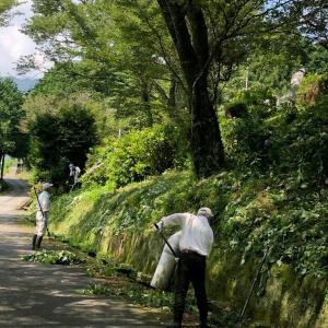 草刈りボランティア2020.6.7 、6.28、7.19  環境保全会
