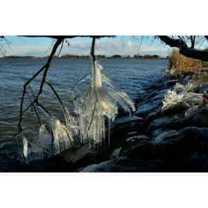 琵琶湖しぶき氷