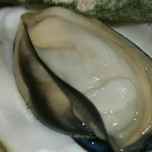 旨い!大きな岩牡蠣。