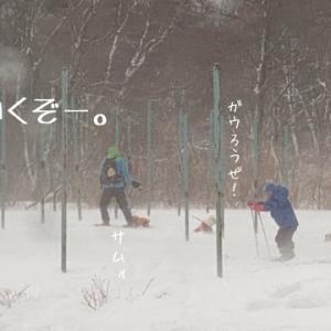 ①ワンコとスノーシュー 【吹雪の中、お疲れ様編】