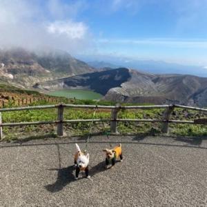 【犬と登山】蔵王、熊野岳!