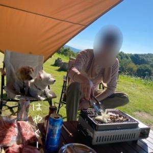 秋のディキャンプ【前編】