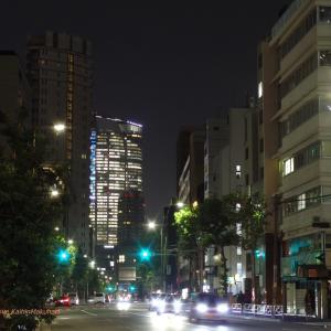 外苑東通りの夜景