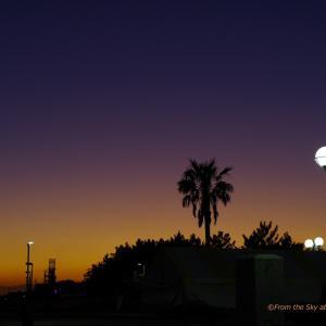 LAのような夕空