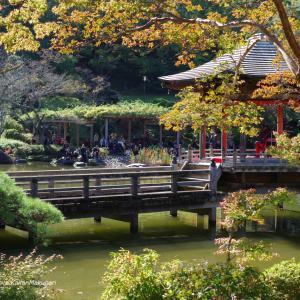 成田山公園/二胡の調べ