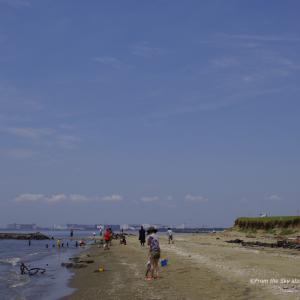 初夏の幕張の浜