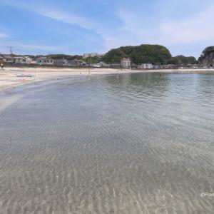 興津海岸の澄んだ水