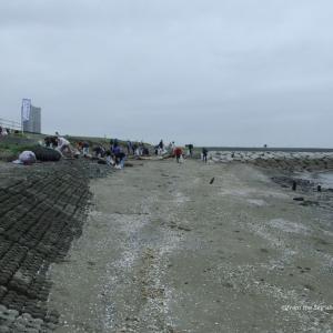 幕張の浜清掃活動