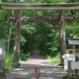 戸隠五社巡り 奥社への道
