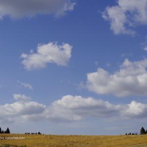 春空に浮かぶ雲