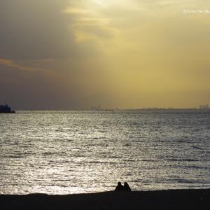 西日に輝く東京湾