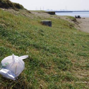 春のビーチクリーン活動