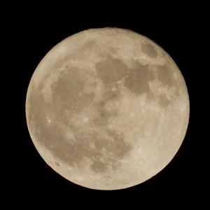 今日は、満月です~