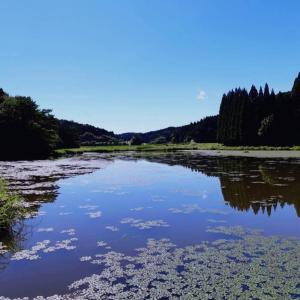 樫原湿原ー九州の尾瀬ー