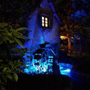 夜のディズニーランドも素敵でした~🌛