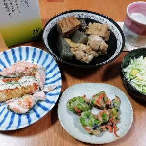 秋鮭の塩焼き、手羽元と厚揚げの煮物、コールスローサラダ他