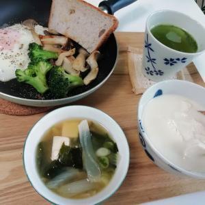 今日の朝昼晩、くら寿司、カレーライスなど
