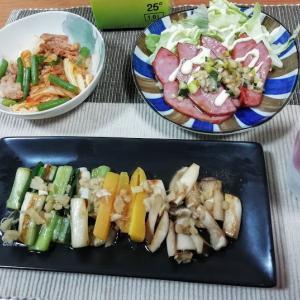 ネギと人参とエリンギの生姜ダレ、ミートローフねぎダレ、豚キムチ炒め