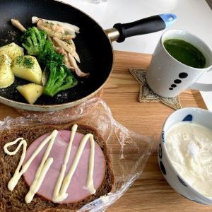 今日の朝昼ごはんと晩酌、肉野菜炒めなど