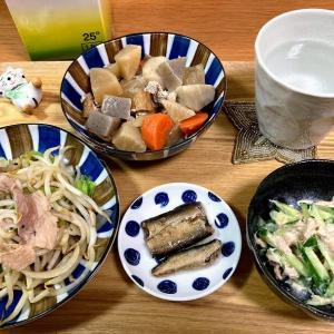 母の煮物、肉野菜炒め、ツナとキュウリのマヨ和え他