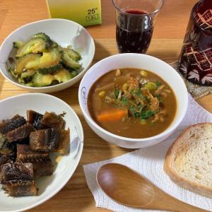 スープハヤシ風のカレー、身欠きニシンの甘辛煮、ゴーヤのお浸し