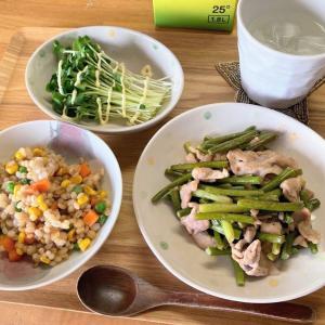 マンナンヒカリ入りもち麦炒飯、ニンニクの芽と豚肉のオイスター炒め、カイワレ大根
