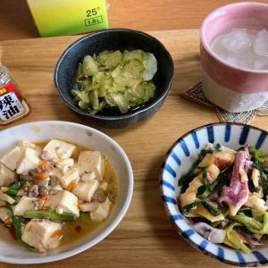 具沢山麻婆豆腐、イカとわけぎの酢みそ和え、キュウリの酢の物