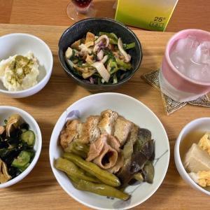 筋無いんげんと厚揚げの煮物、業スーポテサラ・ジェノベーゼソースのせ、キュウリとワカメの酢の物ほか