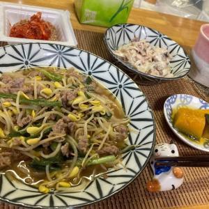 ニラ入りマーボー豆もやし、鯖水煮缶と玉ねぎのマヨサラダ、ロロンカボチャの煮物ほか